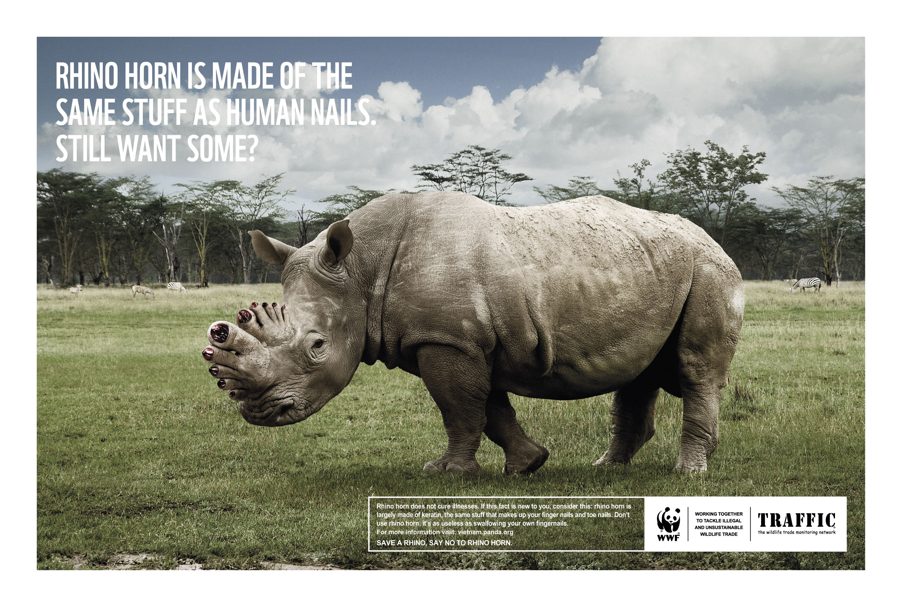 world wildlife fund ad As the eighth anniversary of the 9/11 terrorist attacks that killed more than 3,000 americans approaches, the usually creature-friendly world wildlife fund has been.
