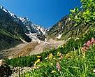 Nature of the Russian Caucasus is threatened by the country's bid for Olympics-2014