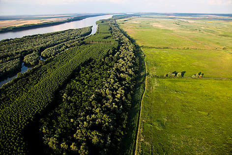 Kalimok Marsh, Bulgaria. This Danube River Basin marsh has been reconnected with the river, ... rel=