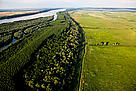 Kalimok marsh, Bulgaria. This Danube River Basin marsh has been reconnected with the river, ... / ©: Alexander Ivanov