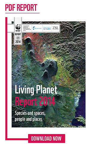 Click to download the Living PLanet Report 2014