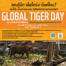 WWF Thailand Global Tiger Day  	© WWF Thailand
