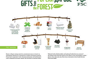 Gifts from the forest