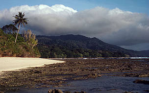 Ujung Kulon National Park Scenery on south coast with adjacent turtle nesting beaches Java, ...  	© WWF / Anton FERNHOUT