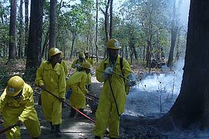 Forest Fire Management Training