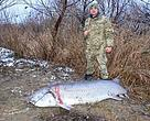Border Guard who caught a sturgeon poacher in the Danube Biosphere Reserve