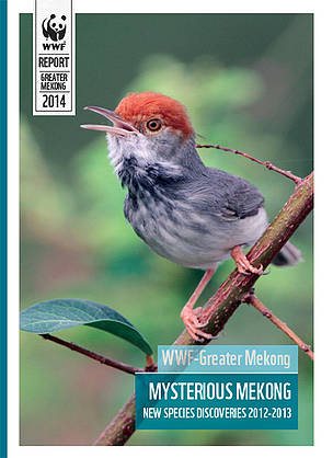 Mysterious Mekong new species report