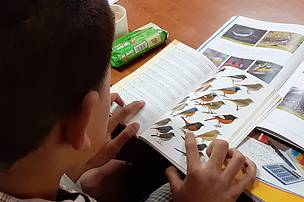 Learning how to use the field guide.