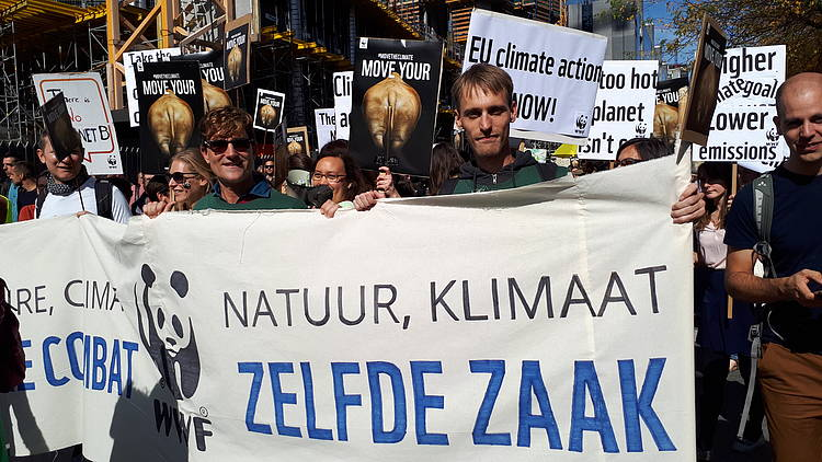 A European Climate Law - WWF's 12 asks
