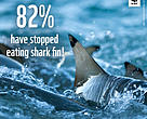 Shark fin consumption on a decline
