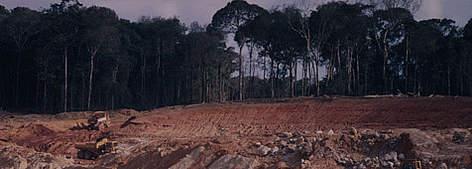 Amazon mining | WWF