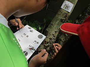 Students learn about various aspects of SMART patrolling, including how to track animal footprints.