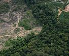 Deforestation area in the Brazilian Amazon, 2014.