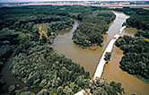 Arms of the Danube River with construction road, Slovakia. / ©: WWF / Paul GLENDELL