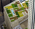 Green roof, the Hancock Tower (Chicago, Illinois)