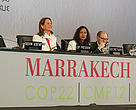 COP22 opens in Marrakech, Morocco