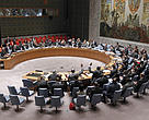 The UN Security Council votes to target illicit wildlife trade in a resolution on the Central African Republic.