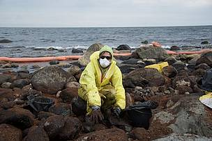 A WWF-Norway staff member assists in the clean-up after an oil spill off the coast of Langesund, ...  	© WWF-Norway / Elizabeth Kjono