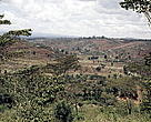 Deforested outskirts of the town of Thika, Kenya. Wangari Maathai has been continuously fighting deforestation in Kenya.