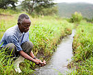Water sourced from an irrigation project, which diverts water from the river to farmland. Rwenzori Mountains, Uganda.