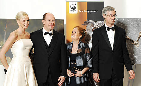 4 people stood in front of WWF banners panda ball rel=