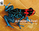 Amazon Alive! A decade of discovery 1999-2009