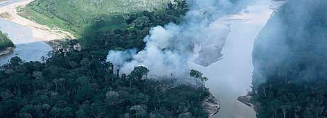 Amazon Threats | WWF