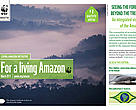 Living Amazon Initiative Newsletter - 8