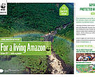 Living Amazon Iniative Newsletter - 9
