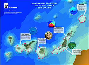 This map identifies areas around the Canary Islands that WWF-Spain is seeking to protect. / ©: WWF-Spain