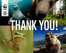 Animals thank you
