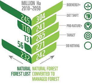 Area of natural forest lost or converted to managed forest under selected scenarios between 2010 and 2050