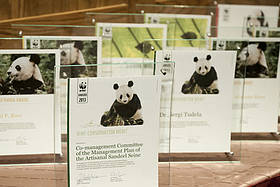 Awards_Richard Stonehouse - WWF-Canon  	© Awards_Richard Stonehouse - WWF