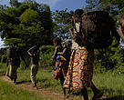 Baka women collecting from the forest.