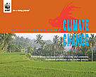 Cover of Bali climate change report
