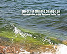 Effects of Climate Change on Eutrophication in the Northern Baltic Sea