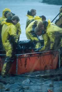 Baltic oil disaster in 2001. / ©: Alfred Schumm