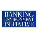 © Banking Environment Initiative