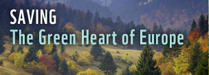 Saving The Green Heart of Europe online banner - v. autumn
