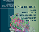 Baseline of Water Ecosystems and Resources in the Bolivian Amazon