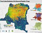 Forest Carbon Distribution of the DRC