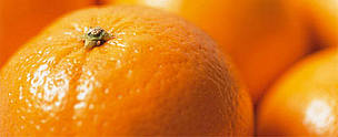 Chemical pesticides and other products used in fruits' production (such as oranges) contain toxic chemical that can contaminate humans at home.