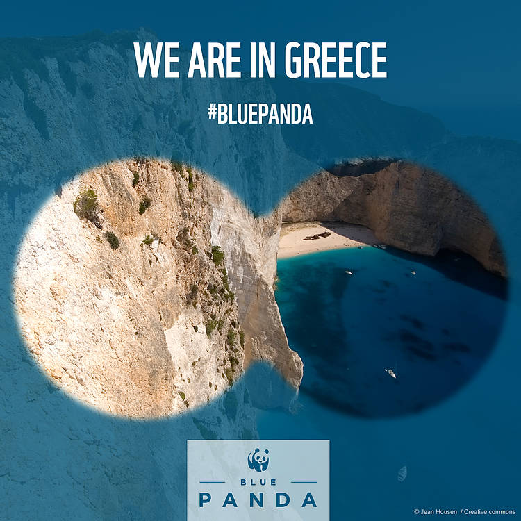 The Blue Panda to stop oil companies from drilling in Greek Paradise