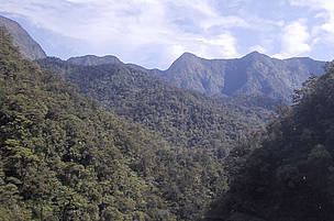 New protected areas for Papua New Guinea