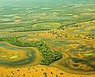 Aerial view of the Pantanal, Brasil