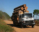 Traveling 22 kilometres from the main road down a dusty track to Jandir Santin's private forest, Sao Jorge, we passed a truck carrying FSC Certified  harvested logs.