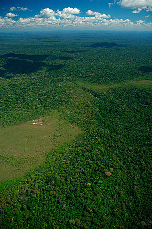 Aerial view of Cerrado savannah area, Juruena National Park, Brazil.