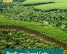 Brazil's new Forest Code