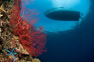 DESTINATION PLANS: Coral Triangle Sustainable Nature-based Tourism Project