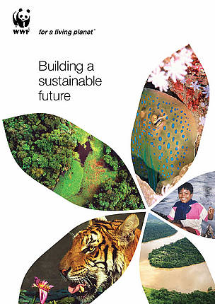 Cover page for 'Building a sustainable future' document